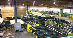 Commercial Sawmill