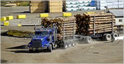 Commercial Lumber Shipping